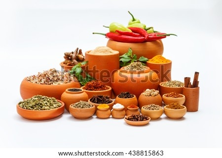 Spices and herbs in terracotta on white background for herbs, group of indian spices and herbs difference ware on white background with copy space for design vegetable, spices, herbs or foods content. - stock photo