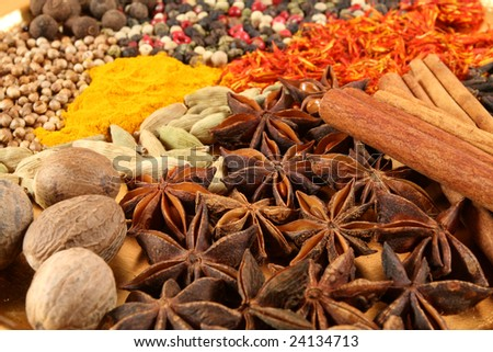 Spices - pepper, aniseed, cinnamon, cardamon and other ingredients - stock photo
