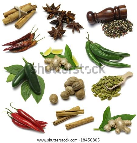Spices sampler - stock photo