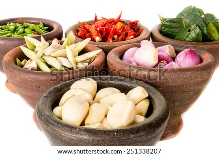 Spicy and Herb cooking ingredient in mortar - stock photo