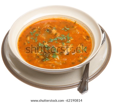 Spicy chicken soup - stock photo