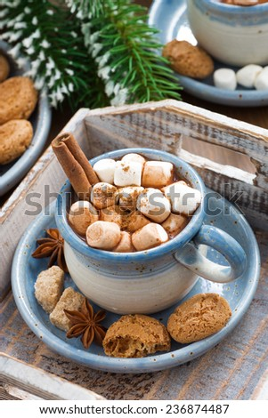 spicy cocoa with marshmallows, cinnamon and cookies on a wooden tray, top view, vertical - stock photo