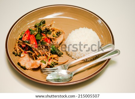 Spicy Stir Fried Fish  and white cooked rice dish - stock photo