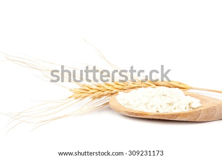 Spikes of wheat and flour in a wooden spoon isolated on a white background. - stock photo