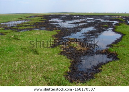 Spilled crude oil on field - nature polution              - stock photo