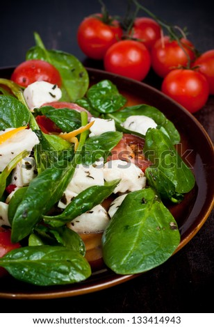 Spinach lettuce with cheese mozzarella and with tomatoes and spices - stock photo