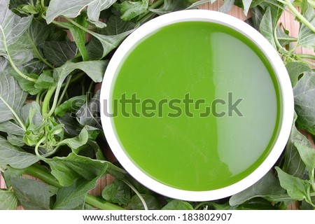 Spinach soup, vegetarian food with fresh spinach leaves. - stock photo