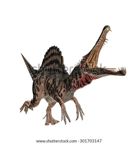Spinosaurus isolated on white background - stock photo