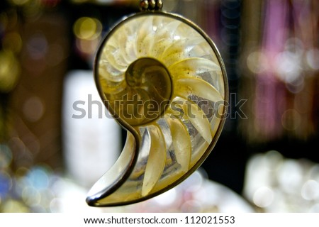 Spiral seashell jewel - stock photo