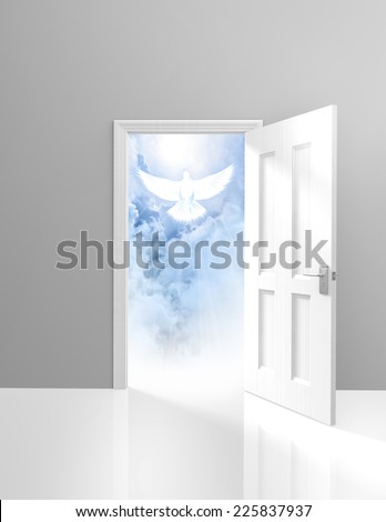 Spirituality and religion concept of an open door and a heavenly white dove - stock photo