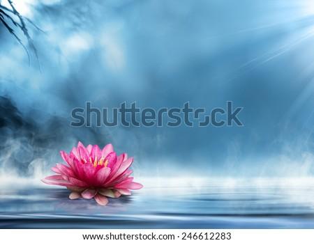 spirituality zen in peaceful scenery  - stock photo