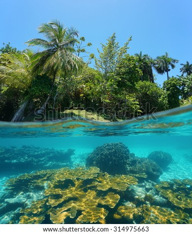 Split image above and below water surface with a lush tropical island shore and a coral reef underwater, Caribbean sea - stock photo