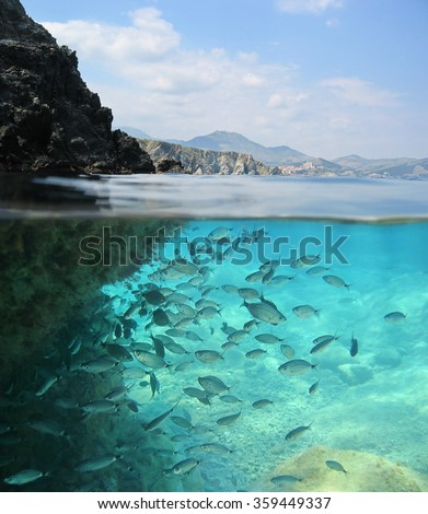 Split image over and under water surface, rocky shore above waterline with a school of fish underwater, Mediterranean sea, Pyrenees Orientales, France - stock photo