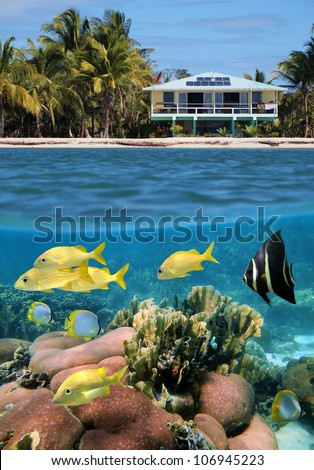 Split view of a beach house and its underwater coral garden with tropical fish - stock photo