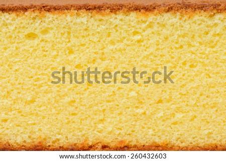 sponge cake - stock photo