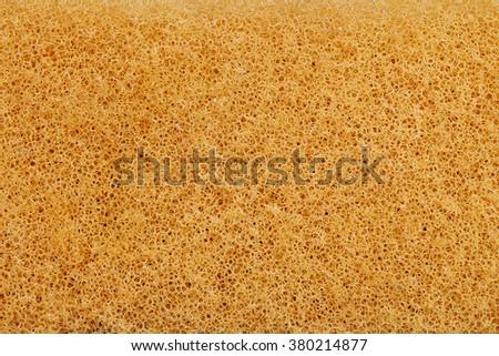 sponge detailed texture - stock photo