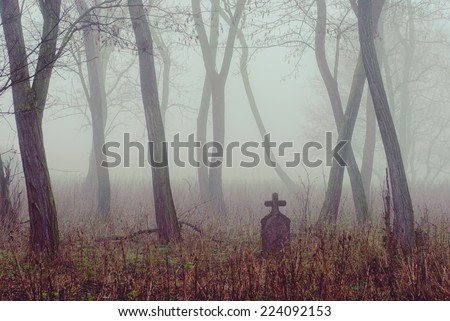 Spooky cemetery in the forest - stock photo