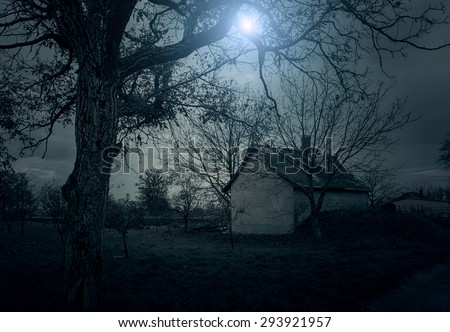 Spooky house in the forest at night - stock photo