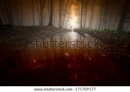 spooky man reflecting in water in surreal dark forest - stock photo