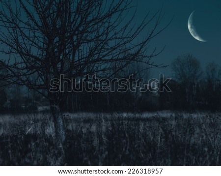 Spooky night on the old cemetery, abstract backgrounds - stock photo