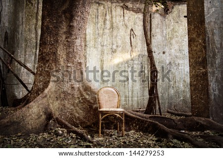 spooky tree and the chair with the old wall on background - grunge and textured - stock photo