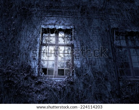 Spooky window on ancient building with climbing plants - stock photo