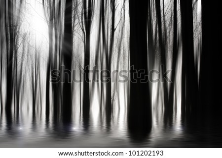 Spooky woods in black and white with flooding - stock photo