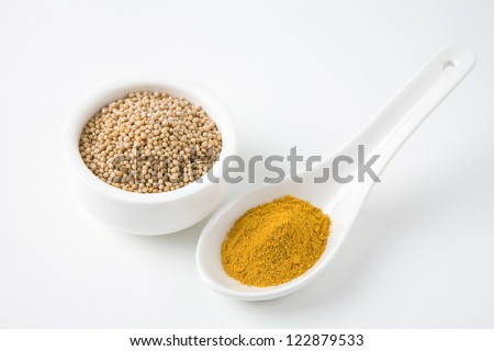Spoon filled with turmeric powder and mustard seed in bowl - stock photo