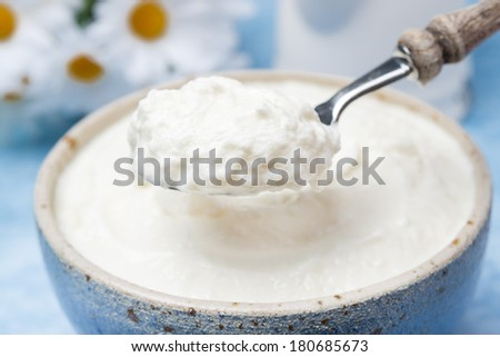 spoon of homemade natural yoghurt, close-up, horizontal - stock photo