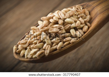 Spoon of Raw Organic Spelt Grain close up on a table - stock photo
