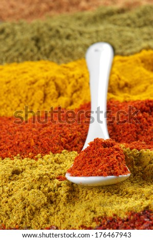 Spoon with paprika on assorted loose powder spices. - stock photo
