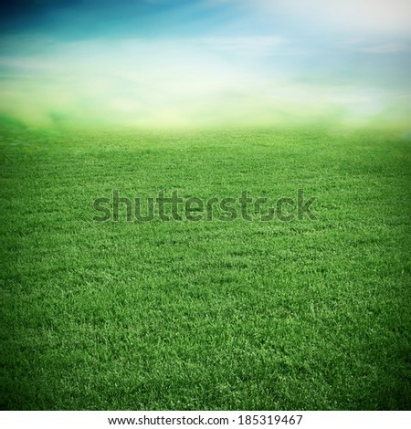 Sport grass field in the stadium - stock photo