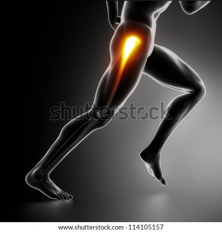 Sports hip injury koncept - stock photo