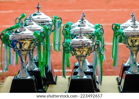 Sports Trophy - stock photo
