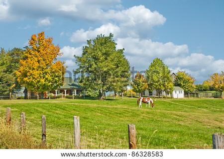 Sprawling acreage of pastures surround a horse farm in Kentucky, USA. - stock photo