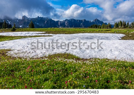 Spray Park Trail , Mount Rainier National Park - stock photo