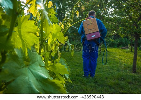 Spraying the Vineyard - stock photo