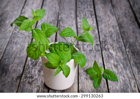 Sprigs of fresh green mint on a wooden surface - stock photo
