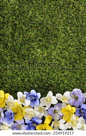 Spring background border. - stock photo