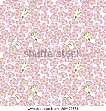 Spring. Background illustration of cherry blossoms.  / Seamless pattern. White background.  - stock photo
