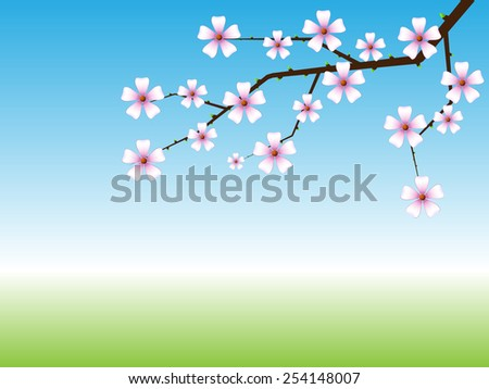 Spring background with blossoming tree branch with copy space. - stock photo