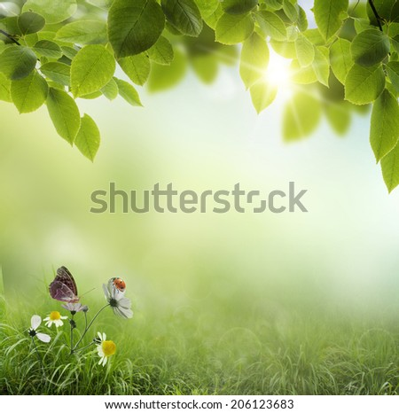 Spring background with flowers and ladybug  - stock photo
