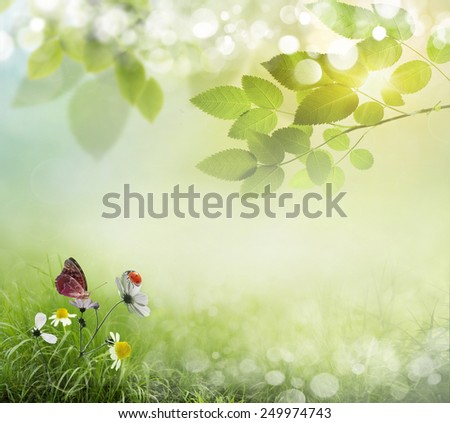 Spring background with flowers and ladybug  - stock photo
