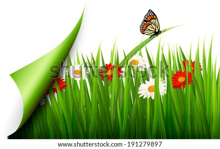 Spring background with flowers, grass and a butterfly.  Raster version - stock photo