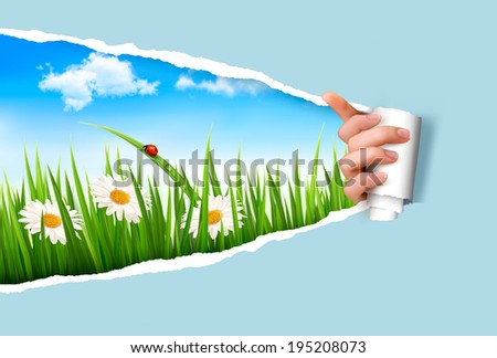 Spring background with flowers, grass and a ladybug. Raster version. - stock photo