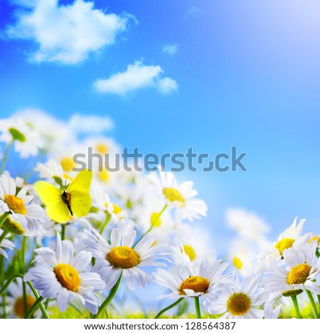 spring background with  on a background of blue sky - stock photo