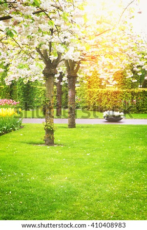 spring  blooming trees at green lawn, retro toned - stock photo