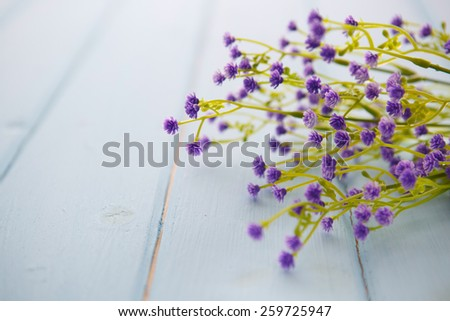 Spring Blossom flowers over clear wood background.  - stock photo