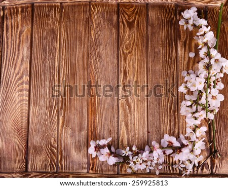 Spring blossom on wood background top view, Slate background., free space - stock photo