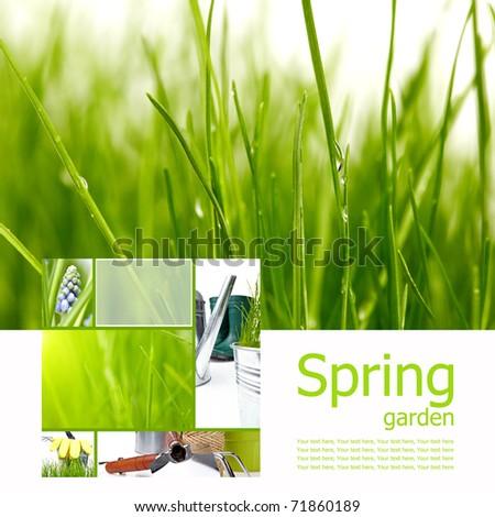 Spring board concept - stock photo